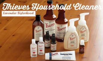 Thieve-Household-Cleaner2